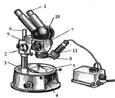 Устройство микроскопа МБС-1: