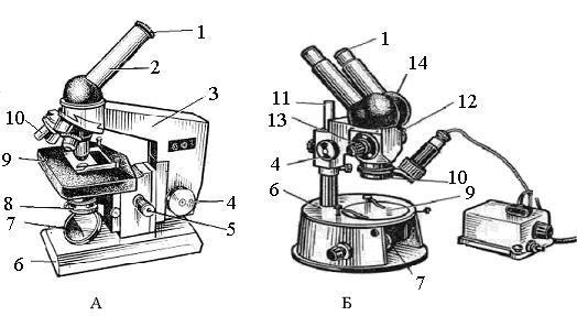 Устройство микроскопов: